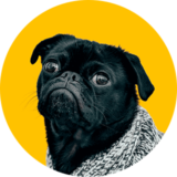 homepage-11--avatar